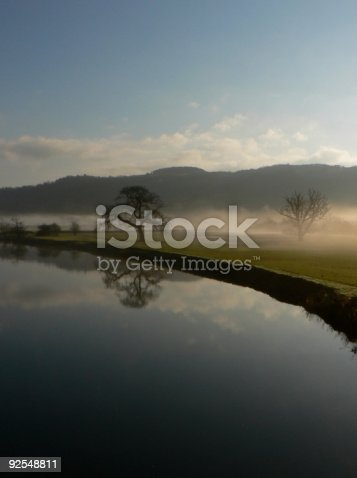 istock Dryslwyn Oak 92548811