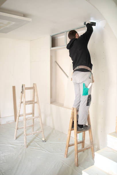 Drywall workers on construction site Professional construction worker installing plaster boards drywall in apartment. He is using battery screwdriver. plaster ceiling design stock pictures, royalty-free photos & images