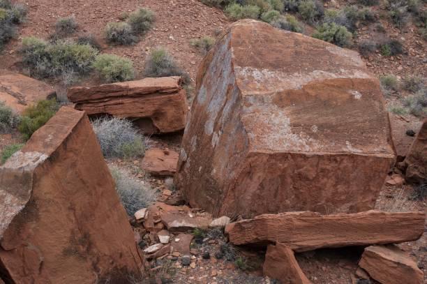 dsc_0098 Desert - Southwest USA stock photo