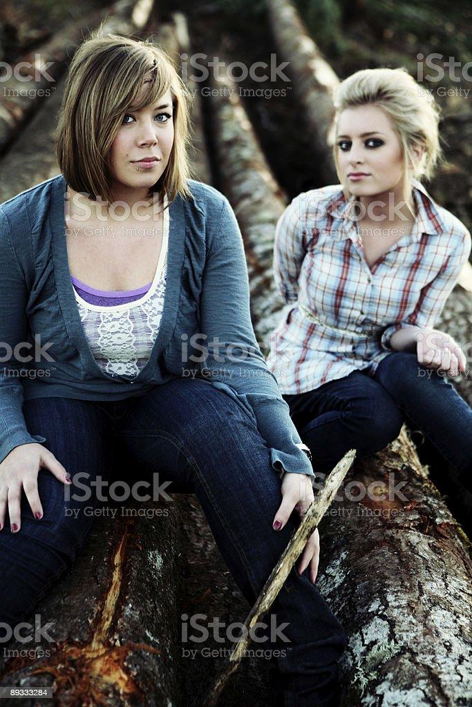 Dual Girls Posing While Sitting on Logs royalty-free stock photo