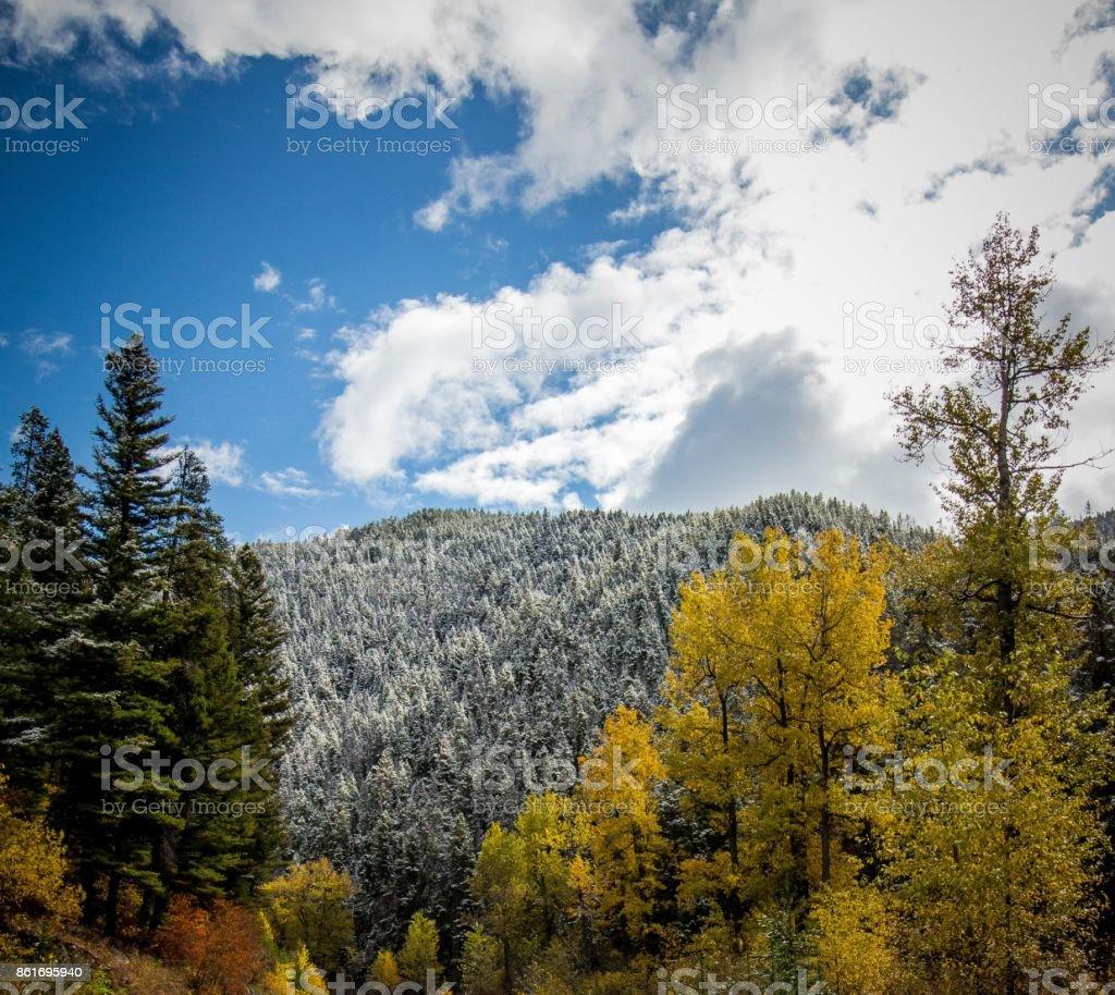Dual Seasons stock photo