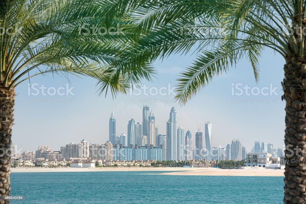 Dubai Marina Skyline framed by Palm Trees stock photo