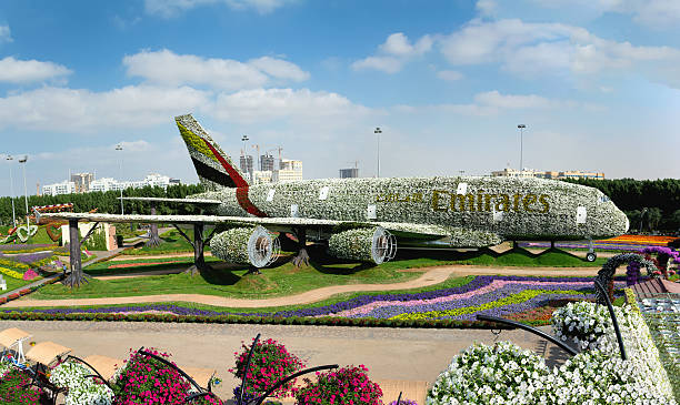 Dubai Miracle Garden.Structure forming the shape of the Airbus A380 stock photo