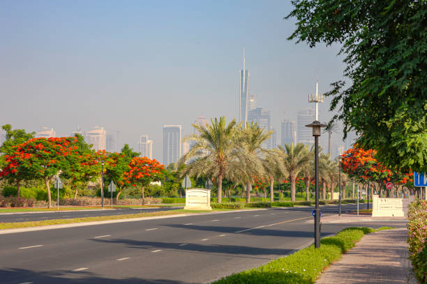 Dubai, UAE - Typical Example Of Urban Landscaping In The Arabian City In The Morning Sunlight; Copy Space stock photo