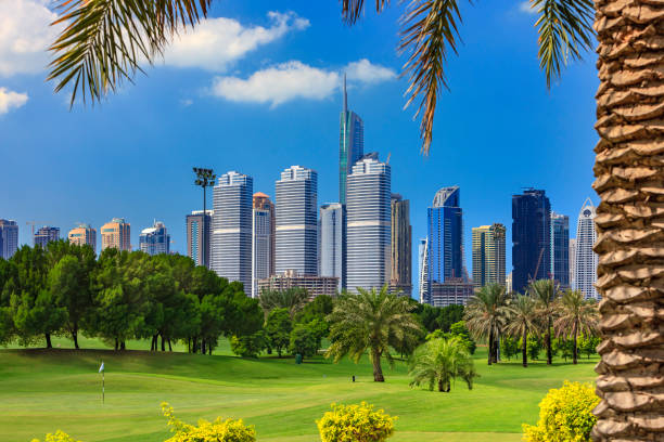 Dubai, United Arab Emirates: Golf Fairway In The Foreground; Modern Skyscrapers Of The Jumeirah Lake Towers Area In The Background, Framed By A Date Palm Tree To The Right stock photo