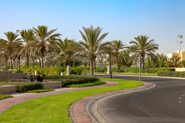 Dubai, United Arab Emirates - Typical Well Maintained, Landscaped Roadside Environment With Date Palm Trees, Grass Area And Flowerbeds In The Modern Arabian City stock photo