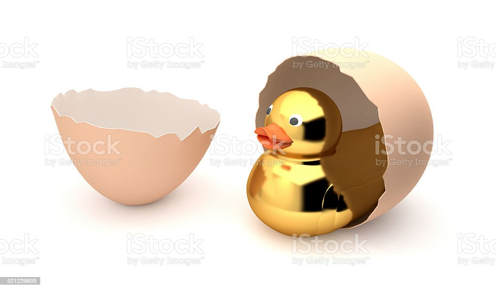 Duck and Egg stock photo