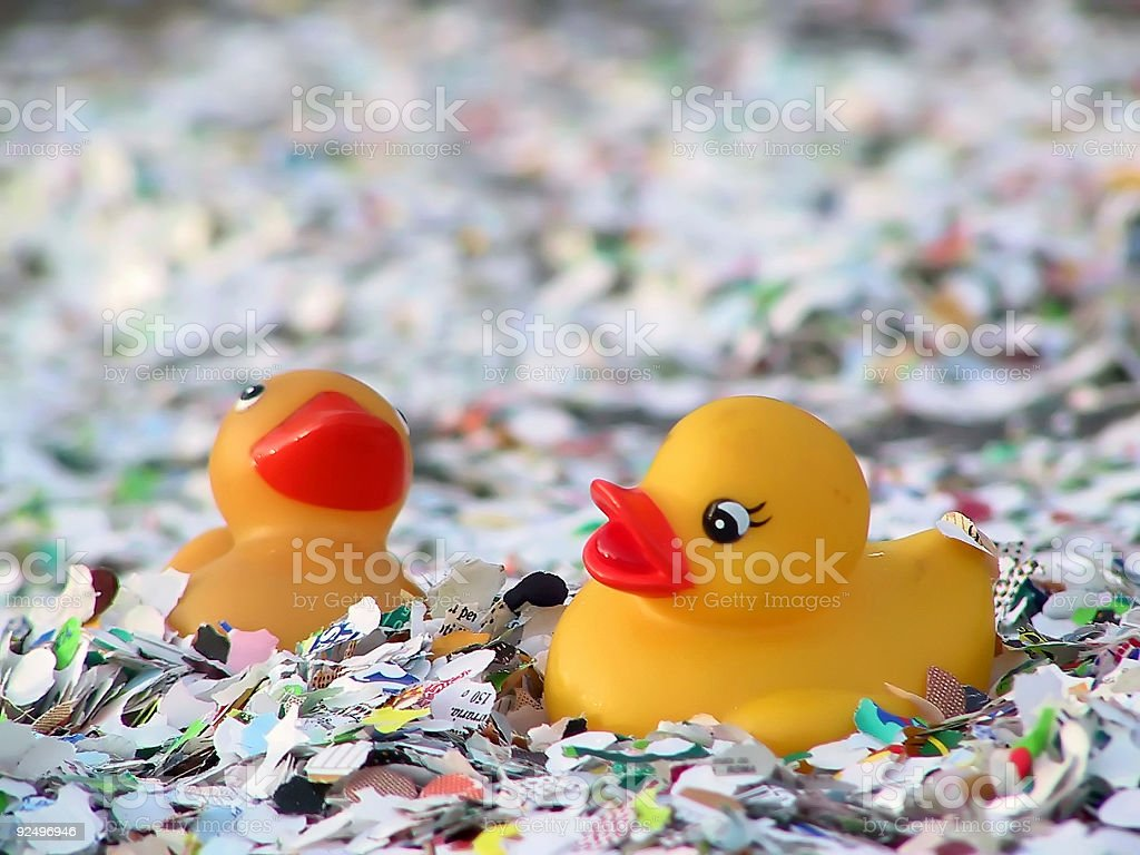Duck carnival royalty-free stock photo