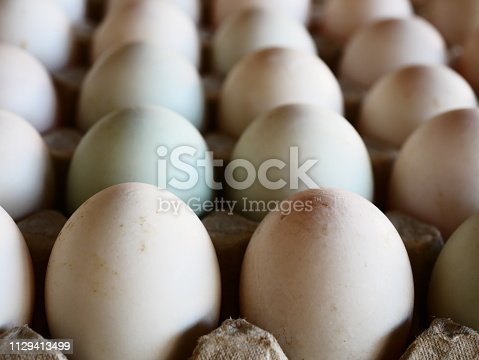 Thailand, Egg, Duck - Bird, Agriculture, Box - Container