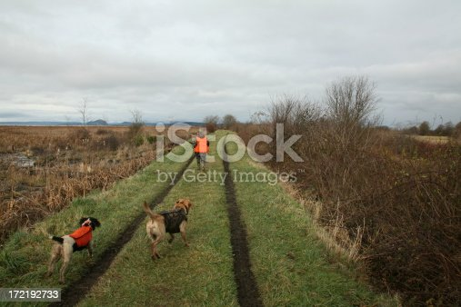 Hunting with two dogs.