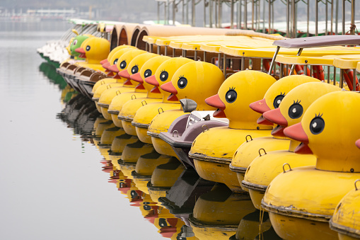 Duck Recreational Boat Docked In a Row