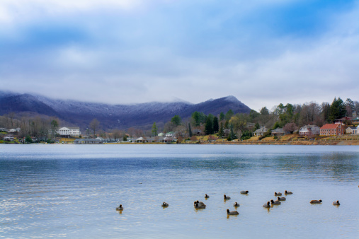 Ducks on Lake Junaluska, North Carolina, USA on a cold Winter's day, with snow capped mountains in the background.