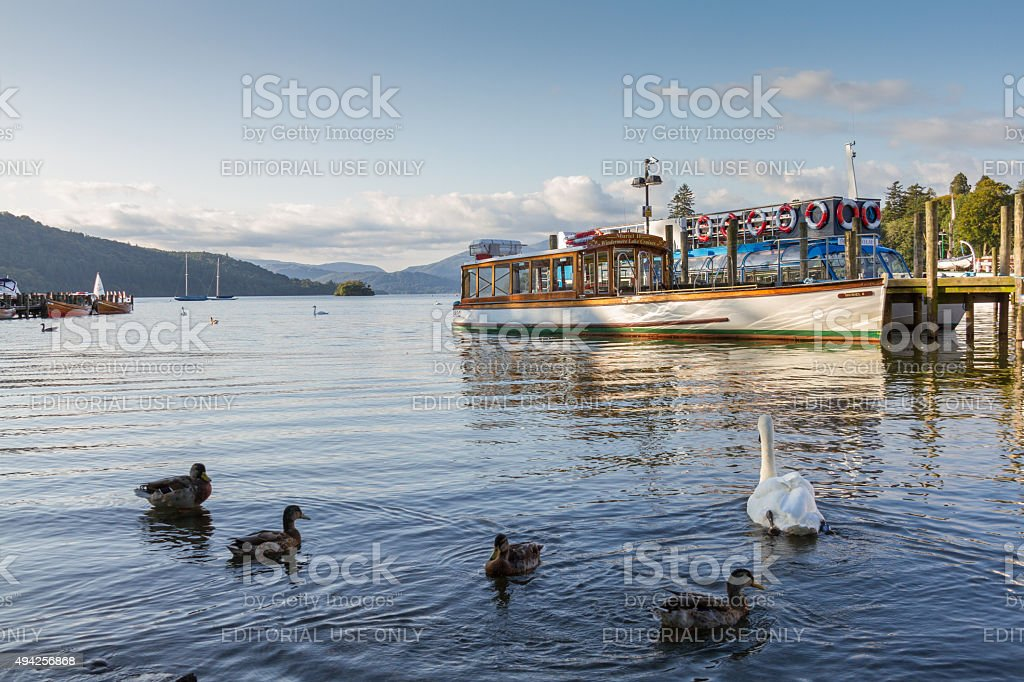 Ducks, Swan and Cruise boat in Lake WIndrmere stock photo