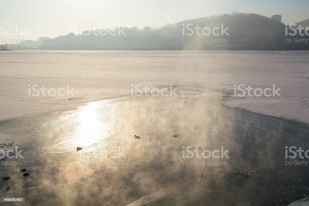 Ducks Swim in a Freezing Winter Pond Among Ice. royalty-free stock photo