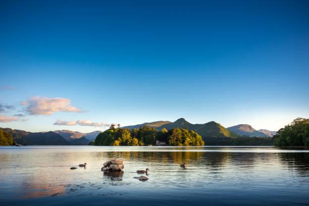 enten schwimmen auf dem see derwentwater in der nähe von keswick, england - cumbria stock-fotos und bilder