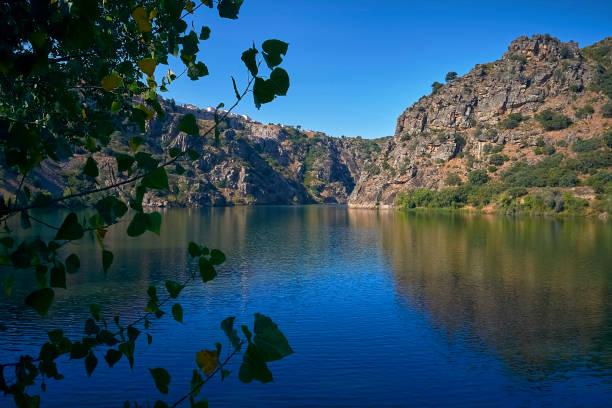 duero river in the vicinity of the natural park of the arribes del duero and the natural park of do douro international. - douro imagens e fotografias de stock