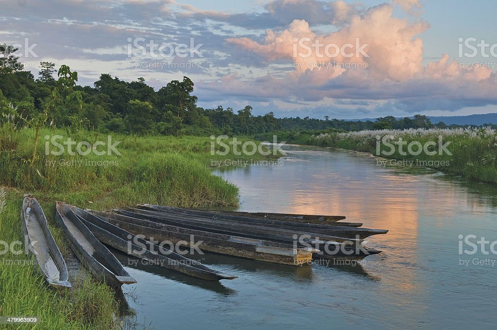 Dugout boats on river bank in Chitvan's national park in Nepal. stock photo