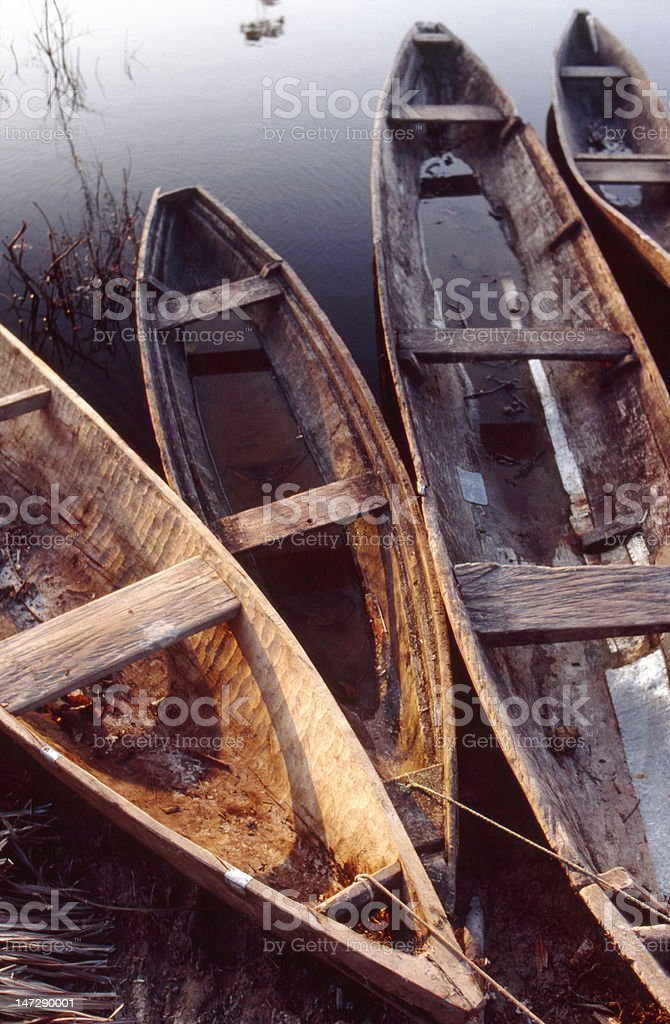 Dugout canoes, Peruvian Amazon royalty-free stock photo