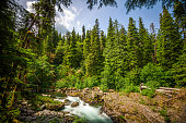 Sol Duc River in Olympic National Park, Washington, USA.