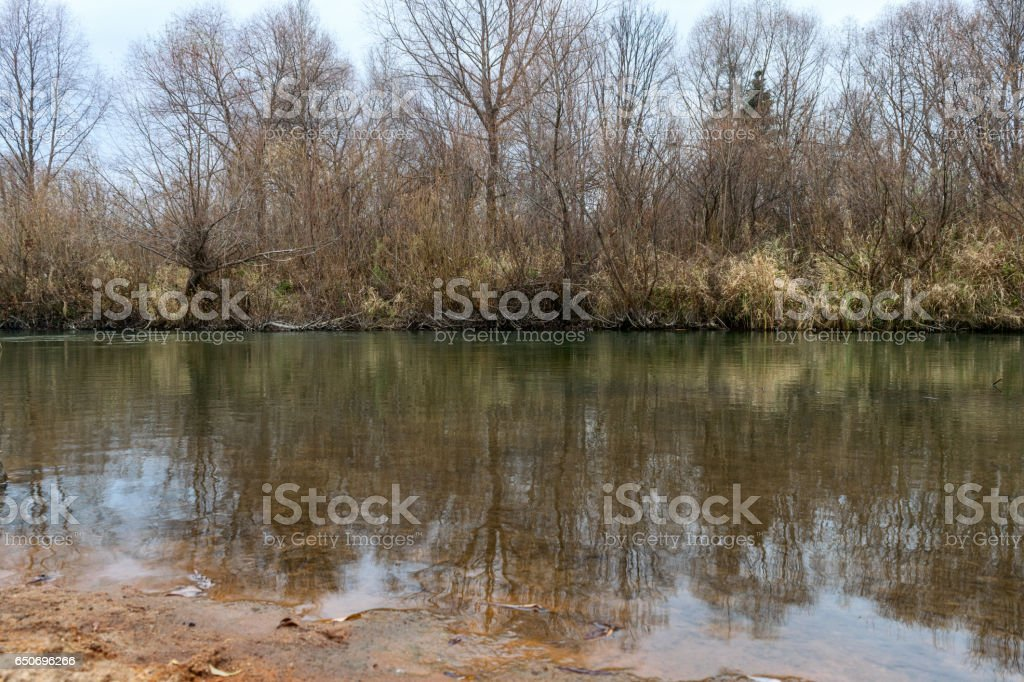 Dull cloudy autumn landscape, river bank and trees reflected in water. stock photo