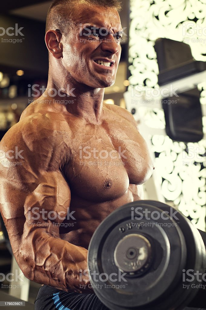 Dumbbell Bicep Curls royalty-free stock photo