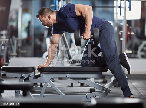 istock Dumbbell row in the gym 543189116