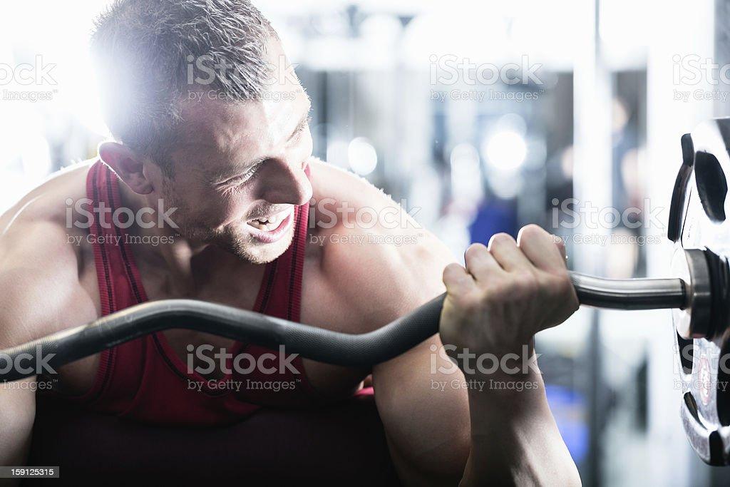 Pesa entrenamiento en el gimnasio foto de stock libre de derechos