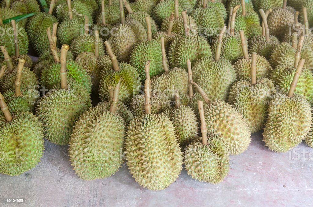Dump Durian from Thailand is Fruit with a strong smell stock photo
