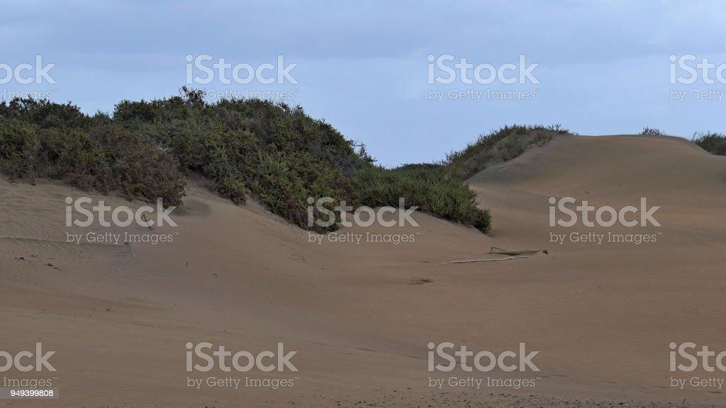 Dunas de Maspalomas - Gran Canaria at storm - Spain stock photo