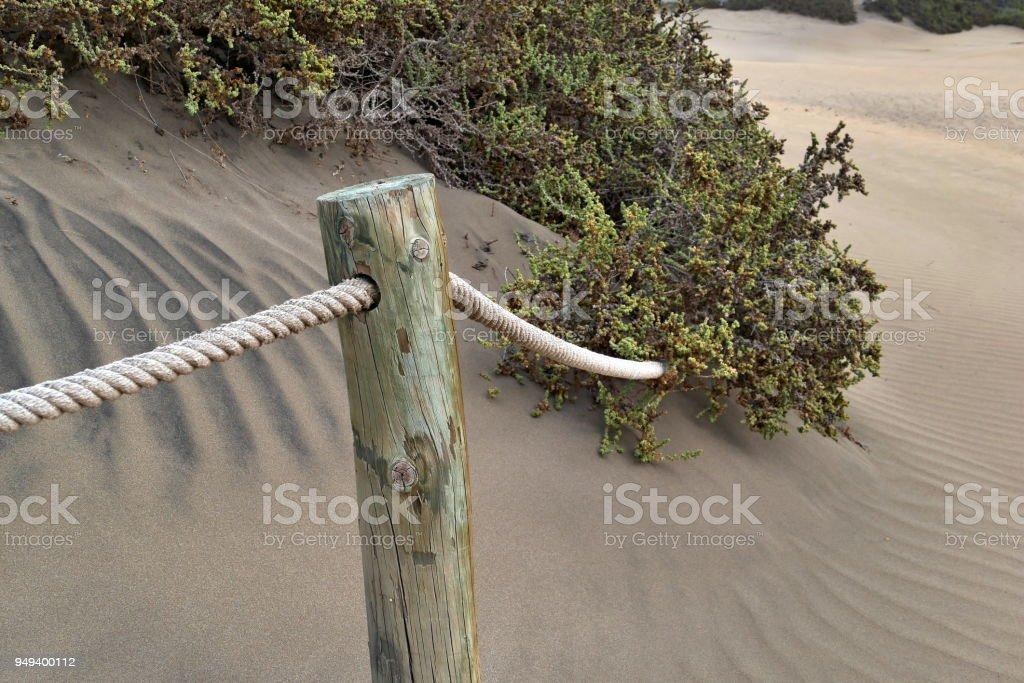 Dunas de Maspalomas - Gran Canaria at storm - with wooden poles_2 stock photo