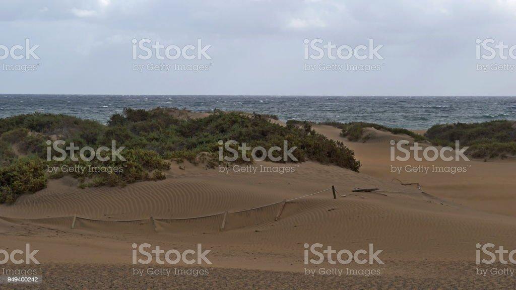 Dunas de Maspalomas - Gran Canaria - Spain - at storm stock photo