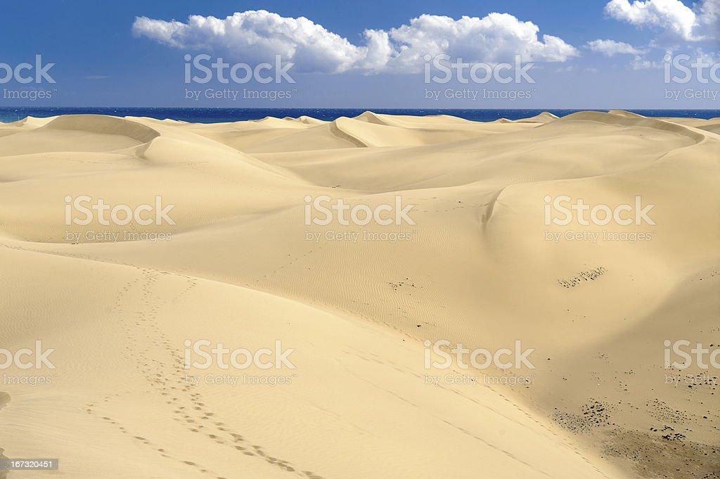 Dunas stock photo