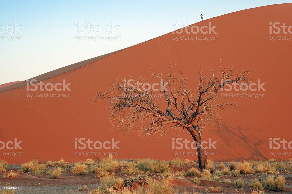 Dune 45 royalty-free stock photo