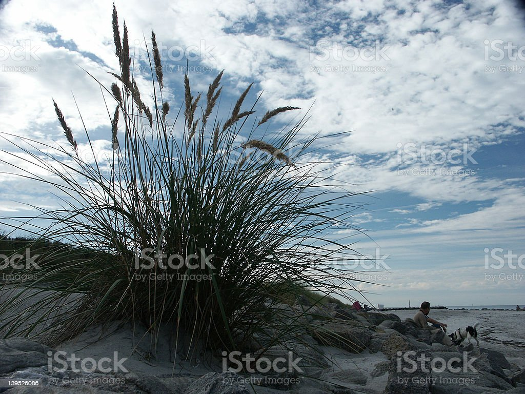 Dune and sky royalty-free stock photo