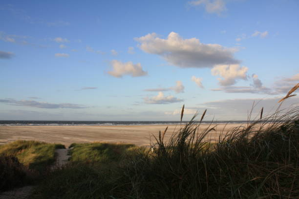dünenübergang zum strand - urlaub norderney stock-fotos und bilder