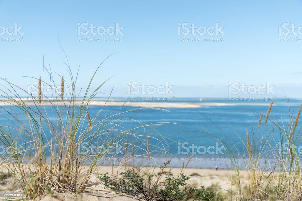 Dune du Pyla, vue sur le banc d'Arguin (Bassin d'Arcachon, France) - Photo