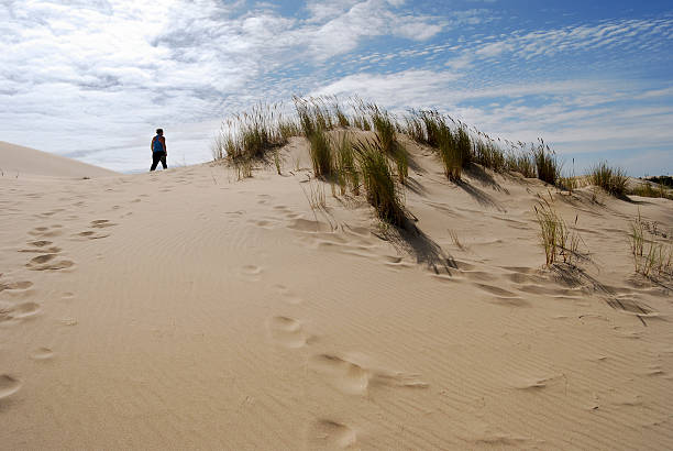 Dune Explorer stock photo