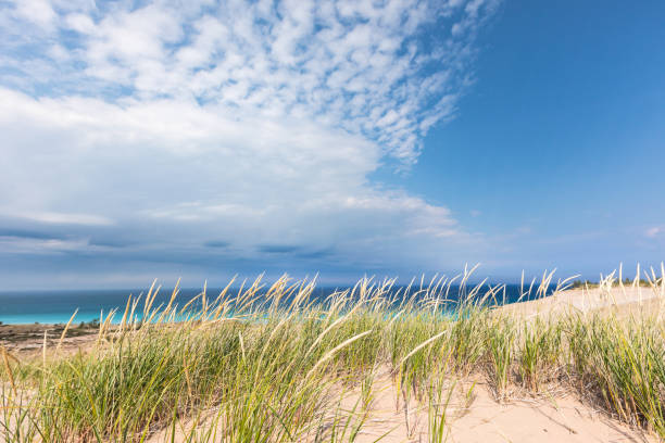 Dune Grass on Sleeping Bear Dunes with Lake Michigan in background