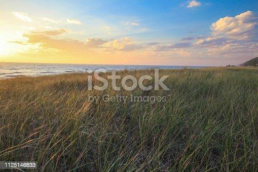 832047798istockphoto Dune Grass Sunset On The Coast Of Lake Michigan 1125146833