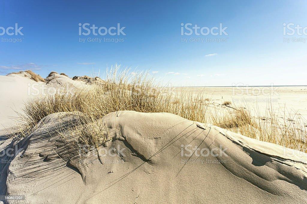 Dune Landschaft Amrum – Foto