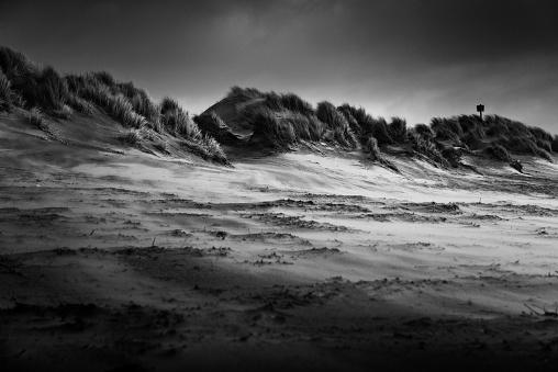 Dune landscape at coast of east frisian island Borkum