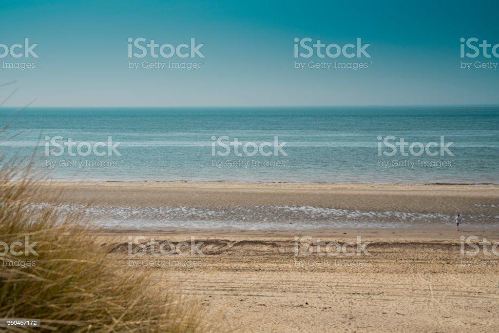 dune landscape, beach Burgh Haamstede, The Netherlands stock photo
