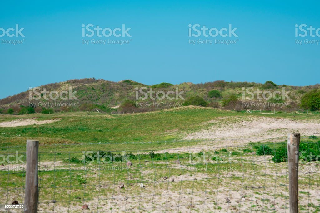 dune landscape, Northsea in Renesse, The Netherlands, against blue sky stock photo