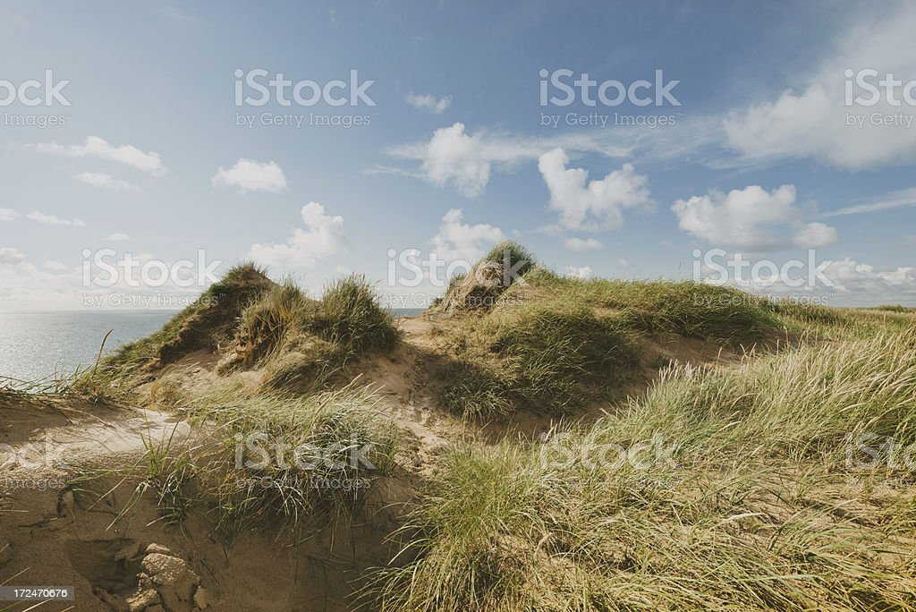 Dune Landscape royalty-free stock photo