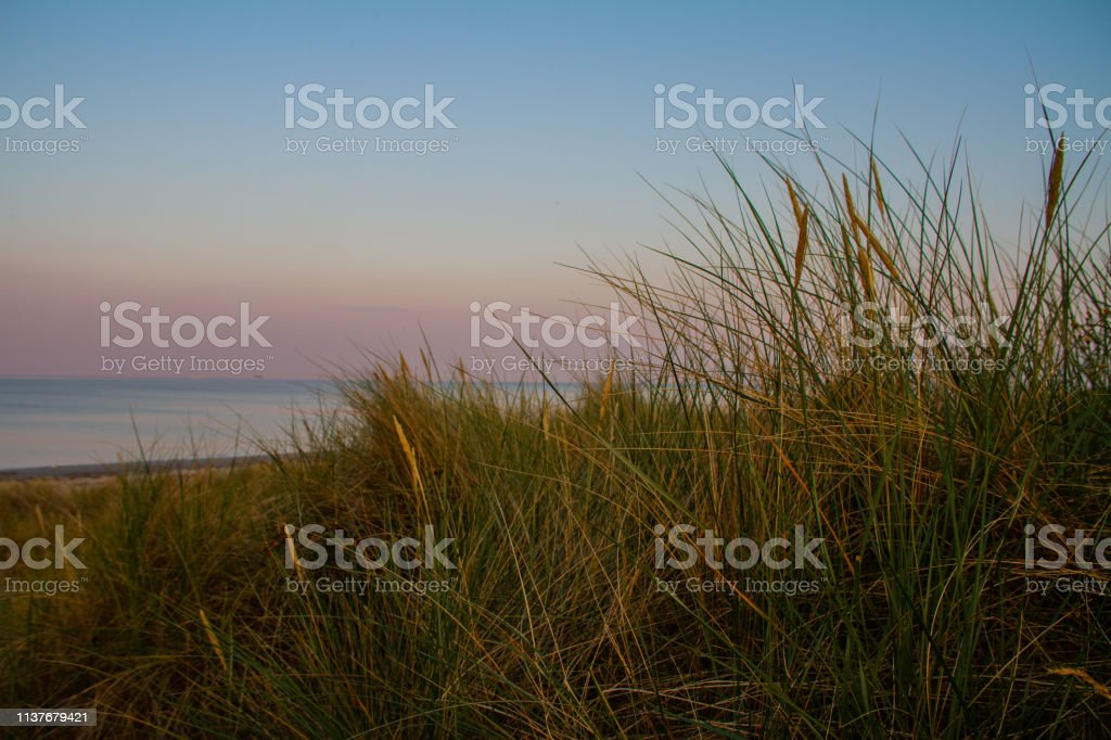 Dune of dreams stock photo
