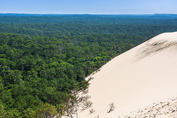 Dune of Pilat. The largest sand dune in Europe, France