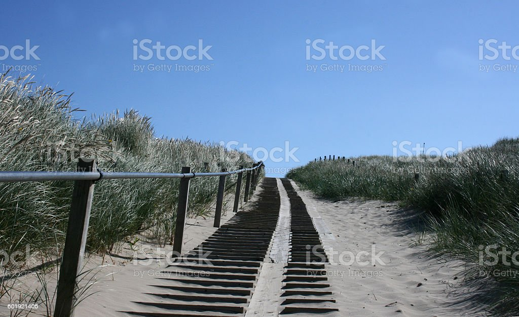 Dune path stock photo