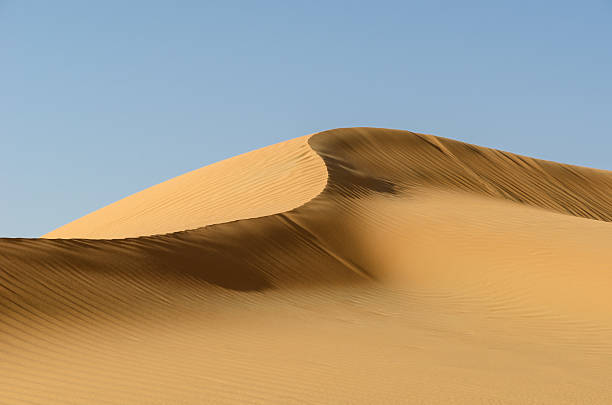 dune ridge in the liwa desert - sand dune stock photos and pictures