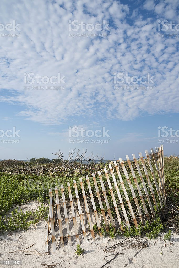 Dunes at Cape Canaveral royalty-free stock photo
