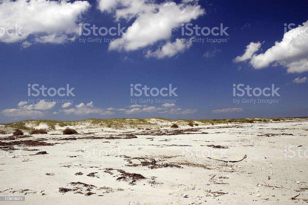 Dunes at Cumberland Island Georgia stock photo